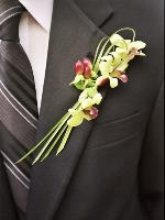 orchid boutonniere for groom, san rafael