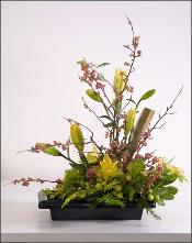 ikebana with lilies delivered to Greenbrae,Marin County.