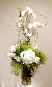Phalaenopsis & Hydrangea: green and white